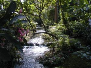 Coyaba River Garden and museum - Jamaica Tourist Board