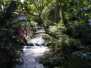 Coyaba River Garden and museum - Jamaica Tourist Board
