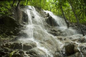 Sommerset Falls. Image courtesy of Jamaica Tourist Board