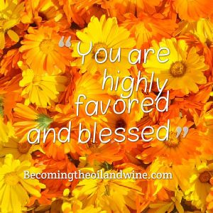 highly favored