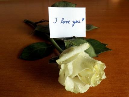 i-love-you-1171403_640