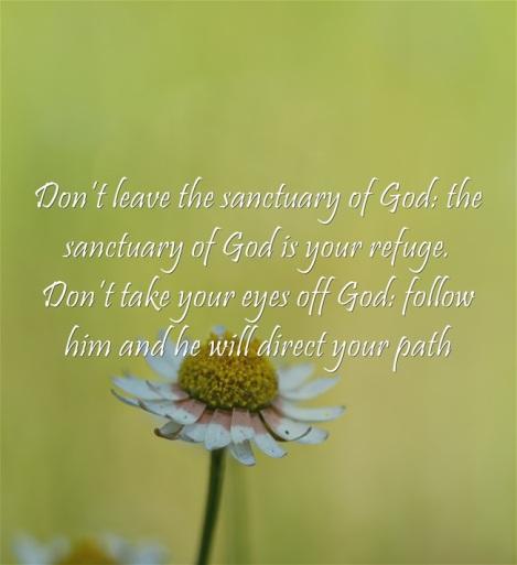 dont-leave-the-sanctuary