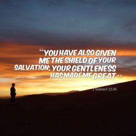 shield-of-salvation