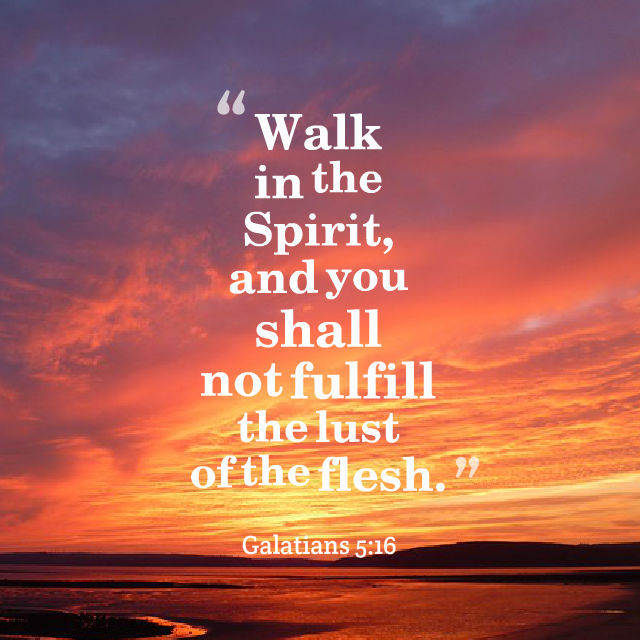 Walk In The Spirit – Becoming the Oil and the Wine